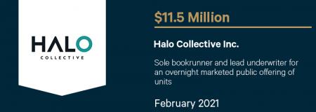 Halo Collective Inc - February 2021